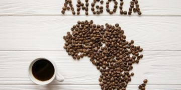 EU and UNCTAD seeks more coffee aroma from Angola