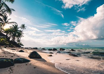 Sandy beaches of Mauritius - The Exchange